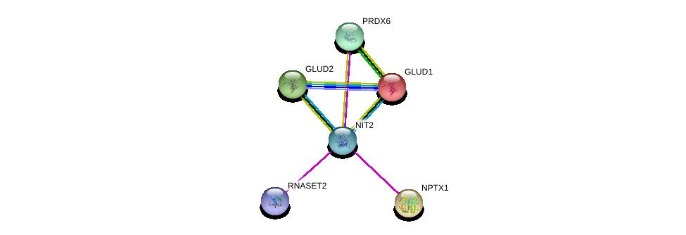 http://string-db.org/version_10/api/image/networkList?limit=0&targetmode=proteins&caller_identity=gene_cards&network_flavor=evidence&identifiers=9606.ENSP00000377696%0d%0a9606.ENSP00000307549%0d%0a9606.ENSP00000342026%0d%0a9606.ENSP00000422846%0d%0a9606.ENSP00000277865%0d%0a9606.ENSP00000327589%0d%0a