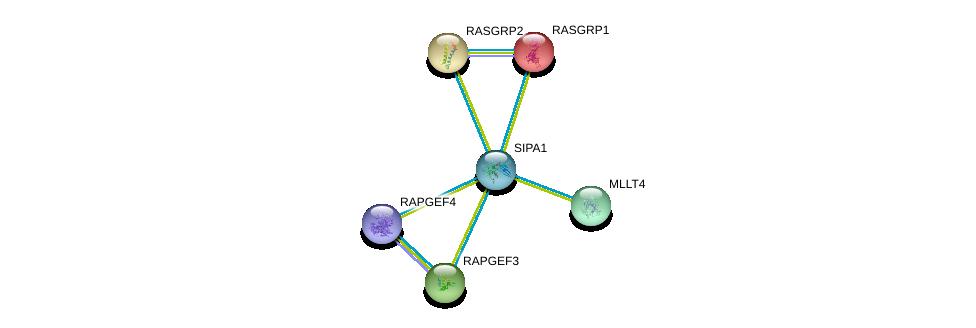 http://string-db.org/version_10/api/image/networkList?limit=0&targetmode=proteins&caller_identity=gene_cards&network_flavor=evidence&identifiers=9606.ENSP00000377771%0d%0a9606.ENSP00000380271%0d%0a9606.ENSP00000375956%0d%0a9606.ENSP00000373864%0d%0a9606.ENSP00000338864%0d%0a9606.ENSP00000310244%0d%0a