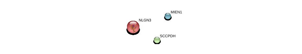 http://string-db.org/version_10/api/image/networkList?limit=0&targetmode=proteins&caller_identity=gene_cards&network_flavor=evidence&identifiers=9606.ENSP00000377778%0d%0a9606.ENSP00000355467%0d%0a9606.ENSP00000351591%0d%0a