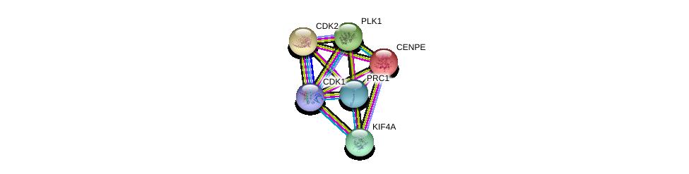 http://string-db.org/version_10/api/image/networkList?limit=0&targetmode=proteins&caller_identity=gene_cards&network_flavor=evidence&identifiers=9606.ENSP00000377793%0d%0a9606.ENSP00000265148%0d%0a9606.ENSP00000266970%0d%0a9606.ENSP00000378699%0d%0a9606.ENSP00000363524%0d%0a9606.ENSP00000300093%0d%0a