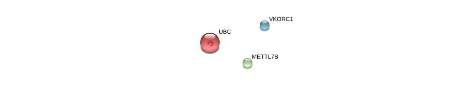 http://string-db.org/version_10/api/image/networkList?limit=0&targetmode=proteins&caller_identity=gene_cards&network_flavor=evidence&identifiers=9606.ENSP00000377796%0d%0a9606.ENSP00000378426%0d%0a9606.ENSP00000344818%0d%0a
