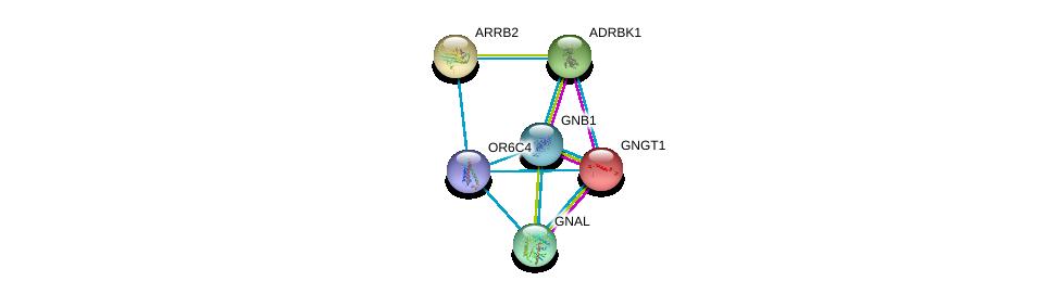 http://string-db.org/version_10/api/image/networkList?limit=0&targetmode=proteins&caller_identity=gene_cards&network_flavor=evidence&identifiers=9606.ENSP00000377799%0d%0a9606.ENSP00000248572%0d%0a9606.ENSP00000367869%0d%0a9606.ENSP00000334051%0d%0a9606.ENSP00000312262%0d%0a9606.ENSP00000269260%0d%0a