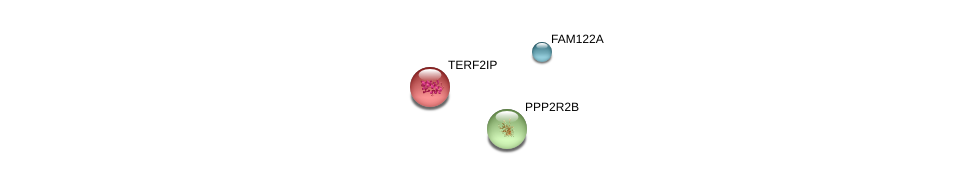 http://string-db.org/version_10/api/image/networkList?limit=0&targetmode=proteins&caller_identity=gene_cards&network_flavor=evidence&identifiers=9606.ENSP00000377807%0d%0a9606.ENSP00000300086%0d%0a9606.ENSP00000336591%0d%0a