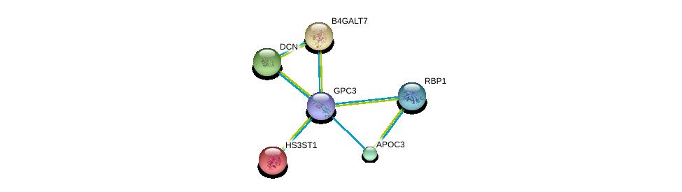 http://string-db.org/version_10/api/image/networkList?limit=0&targetmode=proteins&caller_identity=gene_cards&network_flavor=evidence&identifiers=9606.ENSP00000377836%0d%0a9606.ENSP00000002596%0d%0a9606.ENSP00000029410%0d%0a9606.ENSP00000052754%0d%0a9606.ENSP00000227667%0d%0a9606.ENSP00000232219%0d%0a