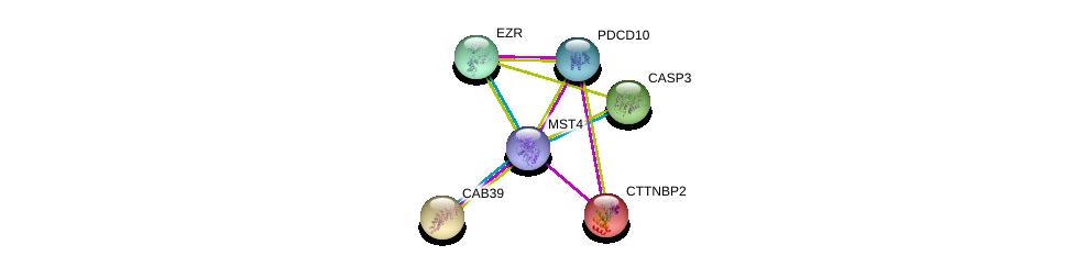 http://string-db.org/version_10/api/image/networkList?limit=0&targetmode=proteins&caller_identity=gene_cards&network_flavor=evidence&identifiers=9606.ENSP00000377867%0d%0a9606.ENSP00000376506%0d%0a9606.ENSP00000311032%0d%0a9606.ENSP00000338934%0d%0a9606.ENSP00000258418%0d%0a9606.ENSP00000160373%0d%0a