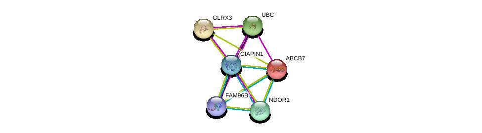 http://string-db.org/version_10/api/image/networkList?limit=0&targetmode=proteins&caller_identity=gene_cards&network_flavor=evidence&identifiers=9606.ENSP00000377914%0d%0a9606.ENSP00000360576%0d%0a9606.ENSP00000330836%0d%0a9606.ENSP00000344818%0d%0a9606.ENSP00000387471%0d%0a9606.ENSP00000253577%0d%0a