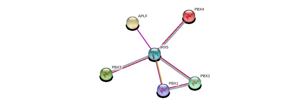 http://string-db.org/version_10/api/image/networkList?limit=0&targetmode=proteins&caller_identity=gene_cards&network_flavor=evidence&identifiers=9606.ENSP00000378132%0d%0a9606.ENSP00000307004%0d%0a9606.ENSP00000362588%0d%0a9606.ENSP00000405890%0d%0a9606.ENSP00000364190%0d%0a9606.ENSP00000251203%0d%0a