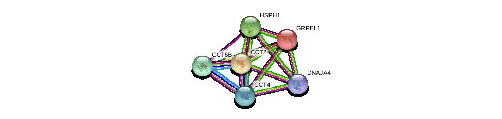 http://string-db.org/version_10/api/image/networkList?limit=0&targetmode=proteins&caller_identity=gene_cards&network_flavor=evidence&identifiers=9606.ENSP00000378324%0d%0a9606.ENSP00000264954%0d%0a9606.ENSP00000318687%0d%0a9606.ENSP00000327191%0d%0a9606.ENSP00000377958%0d%0a9606.ENSP00000299300%0d%0a