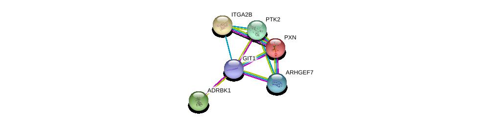 http://string-db.org/version_10/api/image/networkList?limit=0&targetmode=proteins&caller_identity=gene_cards&network_flavor=evidence&identifiers=9606.ENSP00000378338%0d%0a9606.ENSP00000364893%0d%0a9606.ENSP00000228307%0d%0a9606.ENSP00000312262%0d%0a9606.ENSP00000341189%0d%0a9606.ENSP00000262407%0d%0a