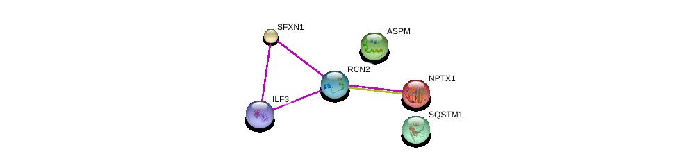 http://string-db.org/version_10/api/image/networkList?limit=0&targetmode=proteins&caller_identity=gene_cards&network_flavor=evidence&identifiers=9606.ENSP00000378349%0d%0a9606.ENSP00000356379%0d%0a9606.ENSP00000316905%0d%0a9606.ENSP00000404121%0d%0a9606.ENSP00000374455%0d%0a9606.ENSP00000307549%0d%0a