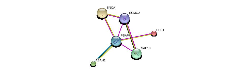 http://string-db.org/version_10/api/image/networkList?limit=0&targetmode=proteins&caller_identity=gene_cards&network_flavor=evidence&identifiers=9606.ENSP00000378394%0d%0a9606.ENSP00000371152%0d%0a9606.ENSP00000405965%0d%0a9606.ENSP00000371973%0d%0a9606.ENSP00000338345%0d%0a9606.ENSP00000244763%0d%0a