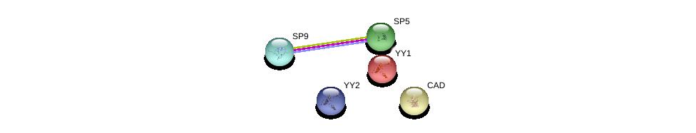 http://string-db.org/version_10/api/image/networkList?limit=0&targetmode=proteins&caller_identity=gene_cards&network_flavor=evidence&identifiers=9606.ENSP00000378418%0d%0a9606.ENSP00000364430%0d%0a9606.ENSP00000264705%0d%0a9606.ENSP00000389381%0d%0a9606.ENSP00000262238%0d%0a9606.ENSP00000262238%0d%0a