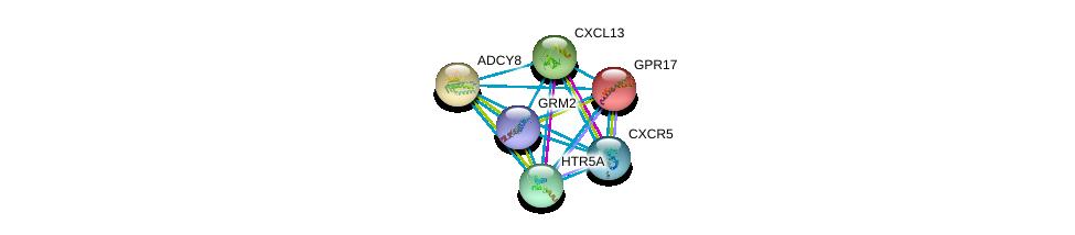 http://string-db.org/version_10/api/image/networkList?limit=0&targetmode=proteins&caller_identity=gene_cards&network_flavor=evidence&identifiers=9606.ENSP00000378492%0d%0a9606.ENSP00000286355%0d%0a9606.ENSP00000286758%0d%0a9606.ENSP00000272644%0d%0a9606.ENSP00000287907%0d%0a9606.ENSP00000292174%0d%0a