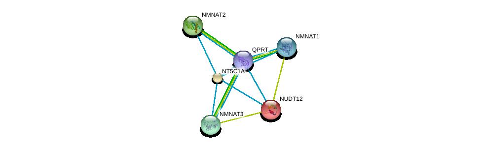 http://string-db.org/version_10/api/image/networkList?limit=0&targetmode=proteins&caller_identity=gene_cards&network_flavor=evidence&identifiers=9606.ENSP00000378782%0d%0a9606.ENSP00000340523%0d%0a9606.ENSP00000366410%0d%0a9606.ENSP00000287713%0d%0a9606.ENSP00000230792%0d%0a9606.ENSP00000235628%0d%0a