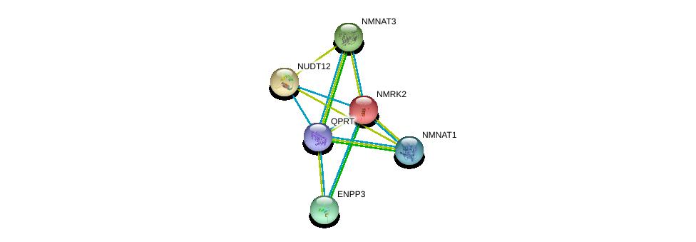http://string-db.org/version_10/api/image/networkList?limit=0&targetmode=proteins&caller_identity=gene_cards&network_flavor=evidence&identifiers=9606.ENSP00000378782%0d%0a9606.ENSP00000350265%0d%0a9606.ENSP00000340523%0d%0a9606.ENSP00000366410%0d%0a9606.ENSP00000230792%0d%0a9606.ENSP00000168977%0d%0a