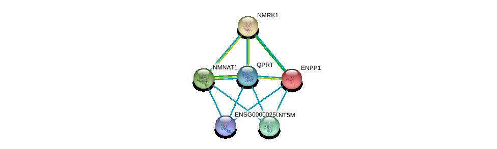 http://string-db.org/version_10/api/image/networkList?limit=0&targetmode=proteins&caller_identity=gene_cards&network_flavor=evidence&identifiers=9606.ENSP00000378782%0d%0a9606.ENSP00000433415%0d%0a9606.ENSP00000373674%0d%0a9606.ENSP00000366410%0d%0a9606.ENSP00000354387%0d%0a9606.ENSP00000354238%0d%0a