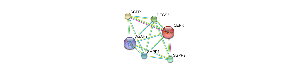 http://string-db.org/version_10/api/image/networkList?limit=0&targetmode=proteins&caller_identity=gene_cards&network_flavor=evidence&identifiers=9606.ENSP00000378897%0d%0a9606.ENSP00000307126%0d%0a9606.ENSP00000247225%0d%0a9606.ENSP00000315137%0d%0a9606.ENSP00000340409%0d%0a9606.ENSP00000216264%0d%0a