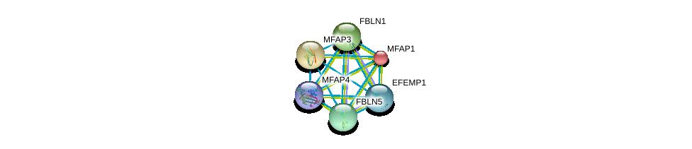 http://string-db.org/version_10/api/image/networkList?limit=0&targetmode=proteins&caller_identity=gene_cards&network_flavor=evidence&identifiers=9606.ENSP00000378957%0d%0a9606.ENSP00000345008%0d%0a9606.ENSP00000331544%0d%0a9606.ENSP00000347596%0d%0a9606.ENSP00000322956%0d%0a9606.ENSP00000267812%0d%0a