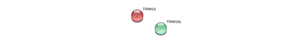 http://string-db.org/version_10/api/image/networkList?limit=0&targetmode=proteins&caller_identity=gene_cards&network_flavor=evidence&identifiers=9606.ENSP00000379030%0d%0a9606.ENSP00000338989%0d%0a