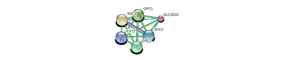 http://string-db.org/version_10/api/image/networkList?limit=0&targetmode=proteins&caller_identity=gene_cards&network_flavor=evidence&identifiers=9606.ENSP00000379032%0d%0a9606.ENSP00000253270%0d%0a9606.ENSP00000254351%0d%0a9606.ENSP00000264039%0d%0a9606.ENSP00000292377%0d%0a9606.ENSP00000307046%0d%0a