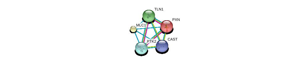http://string-db.org/version_10/api/image/networkList?limit=0&targetmode=proteins&caller_identity=gene_cards&network_flavor=evidence&identifiers=9606.ENSP00000379157%0d%0a9606.ENSP00000310375%0d%0a9606.ENSP00000228307%0d%0a9606.ENSP00000316029%0d%0a9606.ENSP00000316029%0d%0a9606.ENSP00000341189%0d%0a
