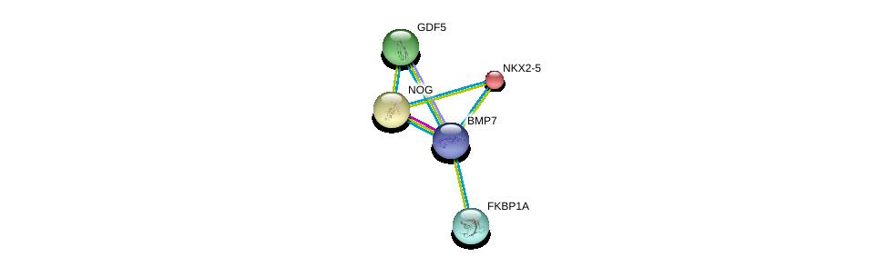 http://string-db.org/version_10/api/image/networkList?limit=0&targetmode=proteins&caller_identity=gene_cards&network_flavor=evidence&identifiers=9606.ENSP00000379204%0d%0a9606.ENSP00000328181%0d%0a9606.ENSP00000363489%0d%0a9606.ENSP00000327758%0d%0a9606.ENSP00000371138%0d%0a9606.ENSP00000371138%0d%0a