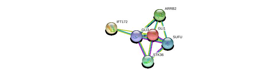 http://string-db.org/version_10/api/image/networkList?limit=0&targetmode=proteins&caller_identity=gene_cards&network_flavor=evidence&identifiers=9606.ENSP00000379258%0d%0a9606.ENSP00000295709%0d%0a9606.ENSP00000358918%0d%0a9606.ENSP00000228682%0d%0a9606.ENSP00000260570%0d%0a9606.ENSP00000269260%0d%0a