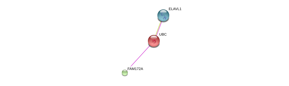 http://string-db.org/version_10/api/image/networkList?limit=0&targetmode=proteins&caller_identity=gene_cards&network_flavor=evidence&identifiers=9606.ENSP00000379294%0d%0a9606.ENSP00000344818%0d%0a9606.ENSP00000385269%0d%0a