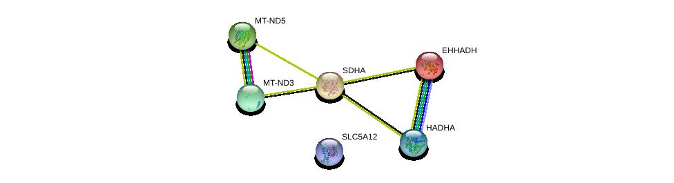 http://string-db.org/version_10/api/image/networkList?limit=0&targetmode=proteins&caller_identity=gene_cards&network_flavor=evidence&identifiers=9606.ENSP00000379326%0d%0a9606.ENSP00000231887%0d%0a9606.ENSP00000370023%0d%0a9606.ENSP00000264932%0d%0a9606.ENSP00000354813%0d%0a9606.ENSP00000355206%0d%0a