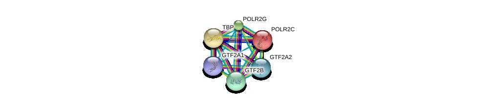 http://string-db.org/version_10/api/image/networkList?limit=0&targetmode=proteins&caller_identity=gene_cards&network_flavor=evidence&identifiers=9606.ENSP00000379372%0d%0a9606.ENSP00000359531%0d%0a9606.ENSP00000230354%0d%0a9606.ENSP00000452454%0d%0a9606.ENSP00000219252%0d%0a9606.ENSP00000301788%0d%0a