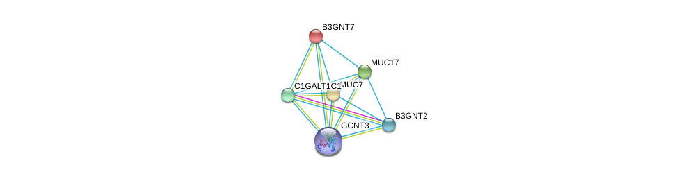 http://string-db.org/version_10/api/image/networkList?limit=0&targetmode=proteins&caller_identity=gene_cards&network_flavor=evidence&identifiers=9606.ENSP00000379377%0d%0a9606.ENSP00000287590%0d%0a9606.ENSP00000302021%0d%0a9606.ENSP00000302716%0d%0a9606.ENSP00000304364%0d%0a9606.ENSP00000305595%0d%0a