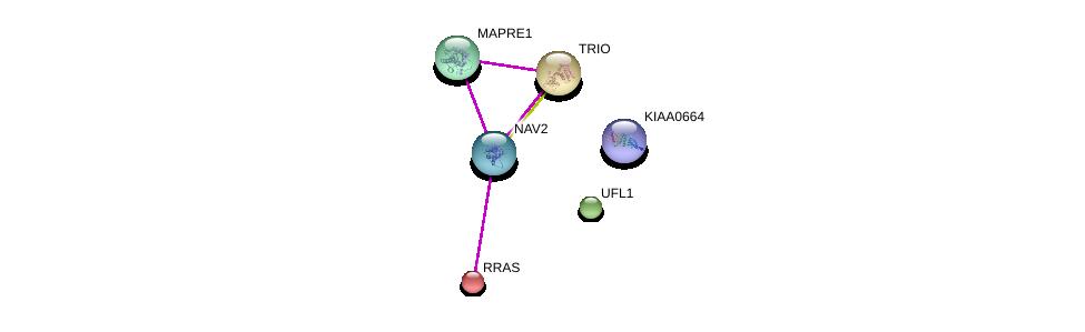 http://string-db.org/version_10/api/image/networkList?limit=0&targetmode=proteins&caller_identity=gene_cards&network_flavor=evidence&identifiers=9606.ENSP00000379394%0d%0a9606.ENSP00000358283%0d%0a9606.ENSP00000246792%0d%0a9606.ENSP00000388872%0d%0a9606.ENSP00000364721%0d%0a9606.ENSP00000339299%0d%0a