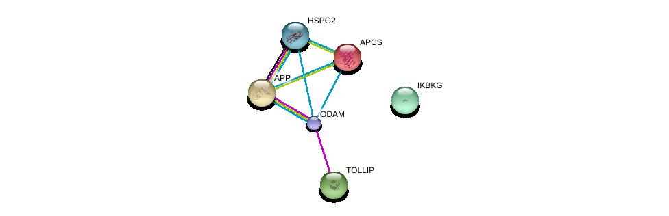 http://string-db.org/version_10/api/image/networkList?limit=0&targetmode=proteins&caller_identity=gene_cards&network_flavor=evidence&identifiers=9606.ENSP00000379401%0d%0a9606.ENSP00000363827%0d%0a9606.ENSP00000255040%0d%0a9606.ENSP00000284981%0d%0a9606.ENSP00000314733%0d%0a9606.ENSP00000358622%0d%0a