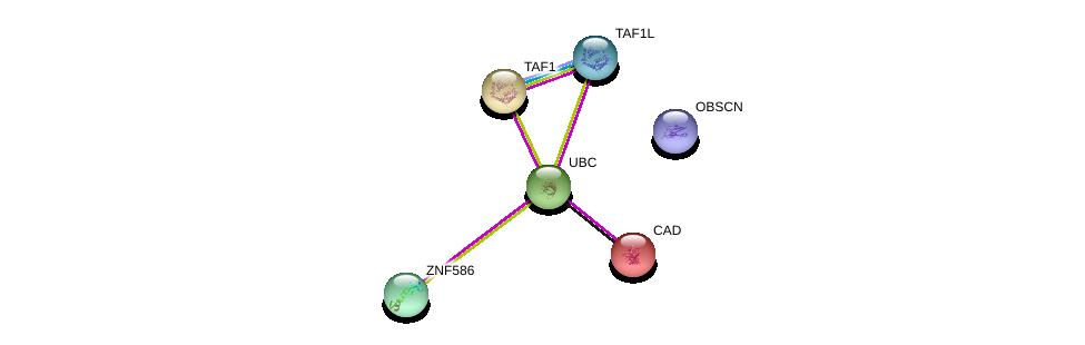 http://string-db.org/version_10/api/image/networkList?limit=0&targetmode=proteins&caller_identity=gene_cards&network_flavor=evidence&identifiers=9606.ENSP00000379458%0d%0a9606.ENSP00000344818%0d%0a9606.ENSP00000264705%0d%0a9606.ENSP00000455507%0d%0a9606.ENSP00000418379%0d%0a9606.ENSP00000276072%0d%0a