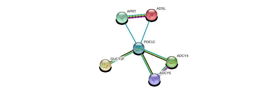 http://string-db.org/version_10/api/image/networkList?limit=0&targetmode=proteins&caller_identity=gene_cards&network_flavor=evidence&identifiers=9606.ENSP00000379496%0d%0a9606.ENSP00000419361%0d%0a9606.ENSP00000218006%0d%0a9606.ENSP00000367615%0d%0a9606.ENSP00000312126%0d%0a9606.ENSP00000216194%0d%0a