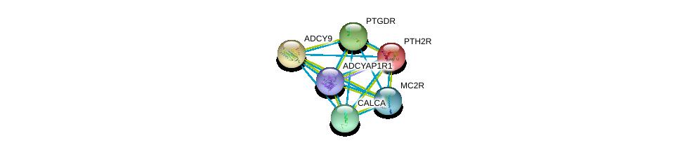 http://string-db.org/version_10/api/image/networkList?limit=0&targetmode=proteins&caller_identity=gene_cards&network_flavor=evidence&identifiers=9606.ENSP00000379514%0d%0a9606.ENSP00000333821%0d%0a9606.ENSP00000331746%0d%0a9606.ENSP00000303424%0d%0a9606.ENSP00000272847%0d%0a9606.ENSP00000294016%0d%0a