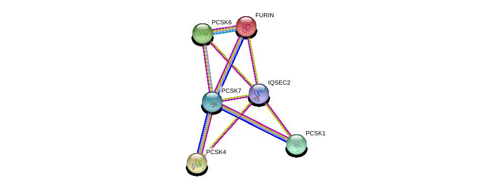 http://string-db.org/version_10/api/image/networkList?limit=0&targetmode=proteins&caller_identity=gene_cards&network_flavor=evidence&identifiers=9606.ENSP00000379712%0d%0a9606.ENSP00000305056%0d%0a9606.ENSP00000300954%0d%0a9606.ENSP00000268171%0d%0a9606.ENSP00000325917%0d%0a9606.ENSP00000308024%0d%0a