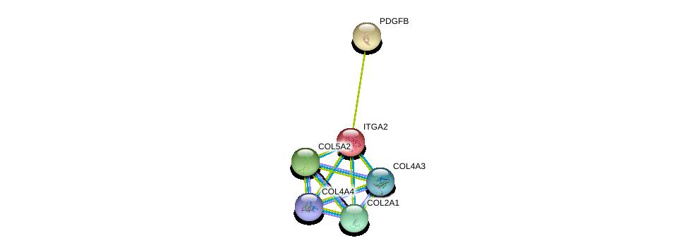 http://string-db.org/version_10/api/image/networkList?limit=0&targetmode=proteins&caller_identity=gene_cards&network_flavor=evidence&identifiers=9606.ENSP00000379823%0d%0a9606.ENSP00000369889%0d%0a9606.ENSP00000330382%0d%0a9606.ENSP00000364000%0d%0a9606.ENSP00000296585%0d%0a9606.ENSP00000379866%0d%0a