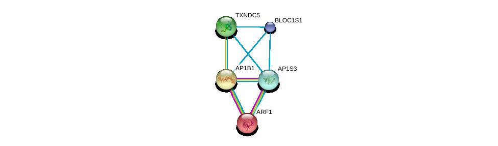 http://string-db.org/version_10/api/image/networkList?limit=0&targetmode=proteins&caller_identity=gene_cards&network_flavor=evidence&identifiers=9606.ENSP00000379891%0d%0a9606.ENSP00000350199%0d%0a9606.ENSP00000272102%0d%0a9606.ENSP00000272102%0d%0a9606.ENSP00000369081%0d%0a9606.ENSP00000447537%0d%0a