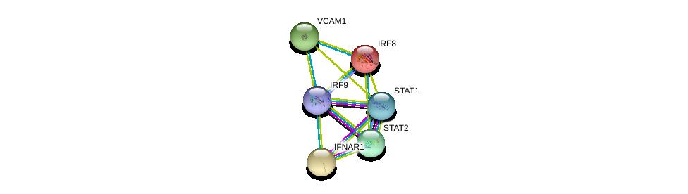 http://string-db.org/version_10/api/image/networkList?limit=0&targetmode=proteins&caller_identity=gene_cards&network_flavor=evidence&identifiers=9606.ENSP00000380073%0d%0a9606.ENSP00000315768%0d%0a9606.ENSP00000354394%0d%0a9606.ENSP00000270139%0d%0a9606.ENSP00000294728%0d%0a9606.ENSP00000268638%0d%0a