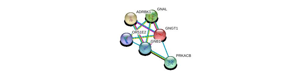 http://string-db.org/version_10/api/image/networkList?limit=0&targetmode=proteins&caller_identity=gene_cards&network_flavor=evidence&identifiers=9606.ENSP00000380153%0d%0a9606.ENSP00000334051%0d%0a9606.ENSP00000367869%0d%0a9606.ENSP00000248572%0d%0a9606.ENSP00000359719%0d%0a9606.ENSP00000312262%0d%0a