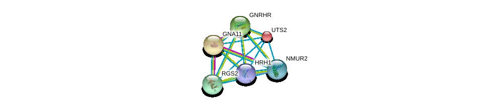 http://string-db.org/version_10/api/image/networkList?limit=0&targetmode=proteins&caller_identity=gene_cards&network_flavor=evidence&identifiers=9606.ENSP00000380247%0d%0a9606.ENSP00000054668%0d%0a9606.ENSP00000078429%0d%0a9606.ENSP00000226413%0d%0a9606.ENSP00000235382%0d%0a9606.ENSP00000255262%0d%0a