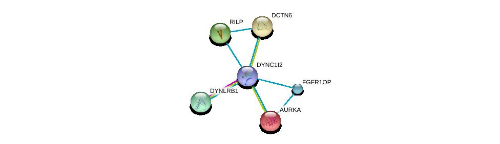 http://string-db.org/version_10/api/image/networkList?limit=0&targetmode=proteins&caller_identity=gene_cards&network_flavor=evidence&identifiers=9606.ENSP00000380308%0d%0a9606.ENSP00000349679%0d%0a9606.ENSP00000301336%0d%0a9606.ENSP00000355812%0d%0a9606.ENSP00000216911%0d%0a9606.ENSP00000221114%0d%0a