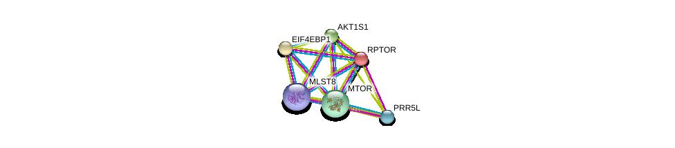 http://string-db.org/version_10/api/image/networkList?limit=0&targetmode=proteins&caller_identity=gene_cards&network_flavor=evidence&identifiers=9606.ENSP00000380313%0d%0a9606.ENSP00000340691%0d%0a9606.ENSP00000307272%0d%0a9606.ENSP00000368144%0d%0a9606.ENSP00000354558%0d%0a9606.ENSP00000341698%0d%0a