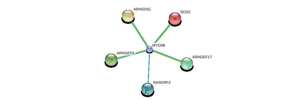 http://string-db.org/version_10/api/image/networkList?limit=0&targetmode=proteins&caller_identity=gene_cards&network_flavor=evidence&identifiers=9606.ENSP00000380444%0d%0a9606.ENSP00000250617%0d%0a9606.ENSP00000219409%0d%0a9606.ENSP00000216373%0d%0a9606.ENSP00000263674%0d%0a9606.ENSP00000265080%0d%0a