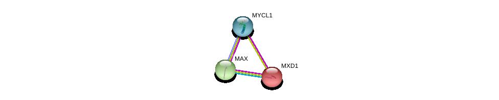 http://string-db.org/version_10/api/image/networkList?limit=0&targetmode=proteins&caller_identity=gene_cards&network_flavor=evidence&identifiers=9606.ENSP00000380494%0d%0a9606.ENSP00000351490%0d%0a9606.ENSP00000264444%0d%0a