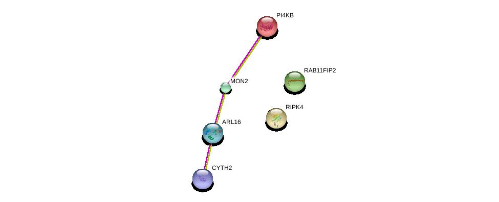 http://string-db.org/version_10/api/image/networkList?limit=0&targetmode=proteins&caller_identity=gene_cards&network_flavor=evidence&identifiers=9606.ENSP00000380635%0d%0a9606.ENSP00000377252%0d%0a9606.ENSP00000408236%0d%0a9606.ENSP00000271657%0d%0a9606.ENSP00000347839%0d%0a9606.ENSP00000332454%0d%0a