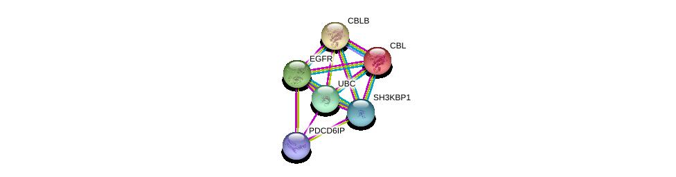http://string-db.org/version_10/api/image/networkList?limit=0&targetmode=proteins&caller_identity=gene_cards&network_flavor=evidence&identifiers=9606.ENSP00000380921%0d%0a9606.ENSP00000264122%0d%0a9606.ENSP00000344818%0d%0a9606.ENSP00000264033%0d%0a9606.ENSP00000275493%0d%0a9606.ENSP00000411825%0d%0a