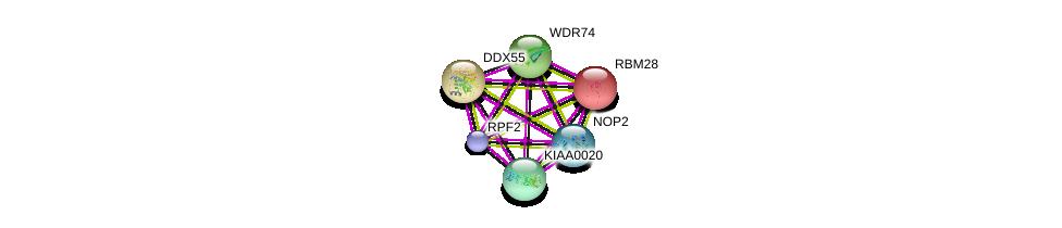 http://string-db.org/version_10/api/image/networkList?limit=0&targetmode=proteins&caller_identity=gene_cards&network_flavor=evidence&identifiers=9606.ENSP00000380982%0d%0a9606.ENSP00000382392%0d%0a9606.ENSP00000402338%0d%0a9606.ENSP00000223073%0d%0a9606.ENSP00000238146%0d%0a9606.ENSP00000278856%0d%0a