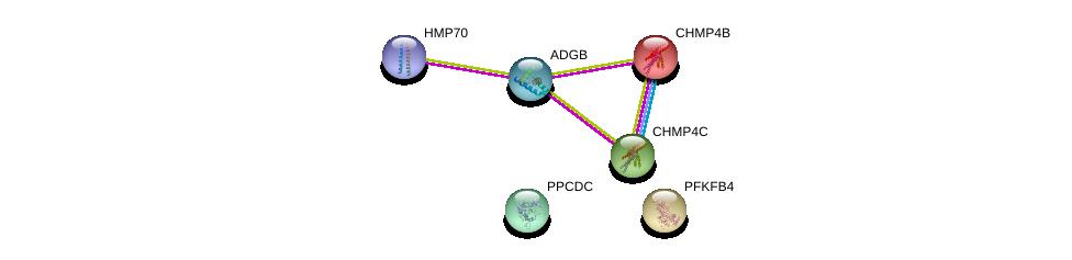 http://string-db.org/version_10/api/image/networkList?limit=0&targetmode=proteins&caller_identity=gene_cards&network_flavor=evidence&identifiers=9606.ENSP00000381036%0d%0a9606.ENSP00000217402%0d%0a9606.ENSP00000297265%0d%0a9606.ENSP00000433967%0d%0a9606.ENSP00000343190%0d%0a9606.ENSP00000232375%0d%0a